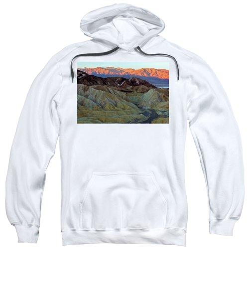 Brilliant And Subdued Sweatshirt