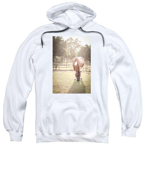 Brown Horse In A Pasture Sweatshirt