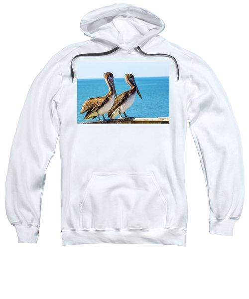 Brown Pelican Pair Sweatshirt