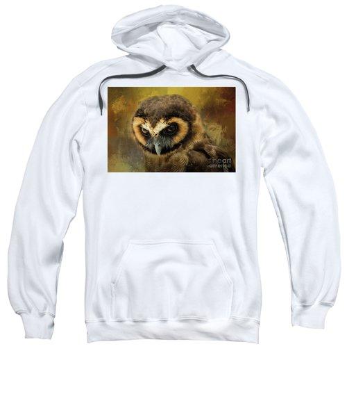 Brown Wood Owl Sweatshirt