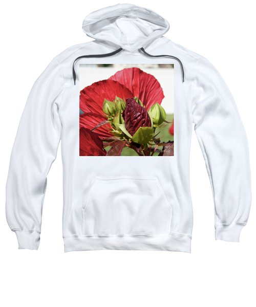 Budding Beauty Sweatshirt