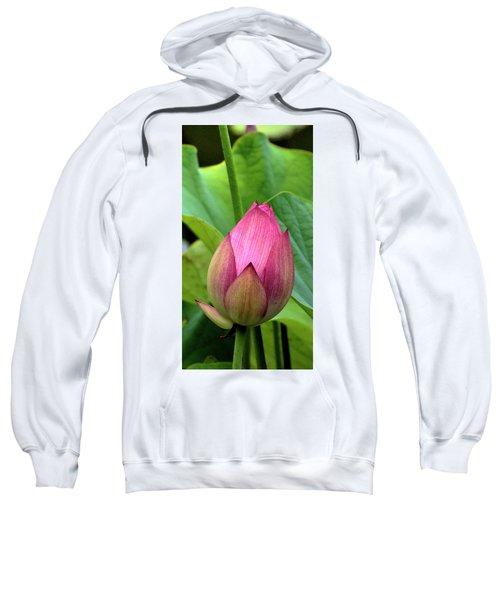 Budding Sweatshirt