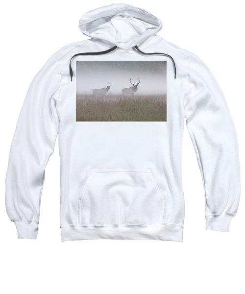Bull And Cow Elk In Fog - September 30 2016 Sweatshirt