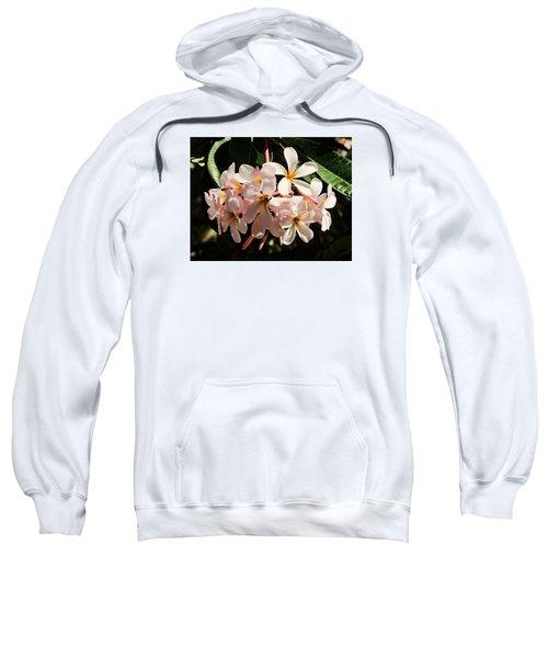 Bunch Of Plumeria Sweatshirt