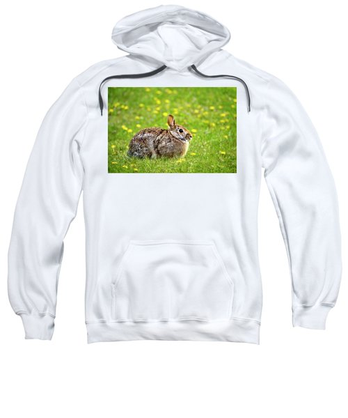 Bunny Rabbit Sweatshirt