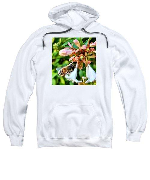 Busy As A Bee Sweatshirt