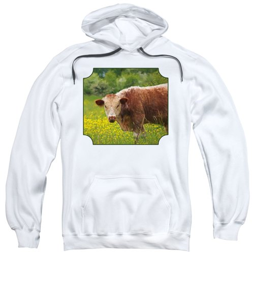 Buttercup - Brown Cow Sweatshirt