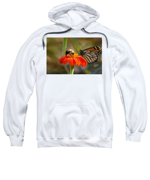 Butterfly And Bumble Bee Sweatshirt