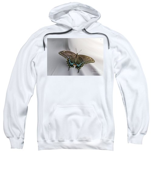 Butterfly At Picnic Sweatshirt