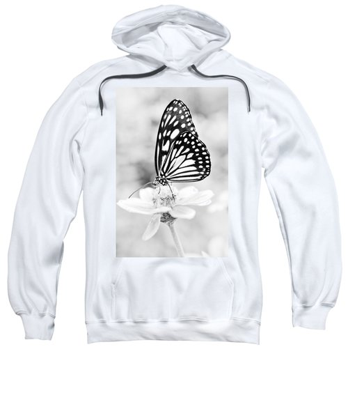 Butterfly Wings 7 - Black And White Sweatshirt