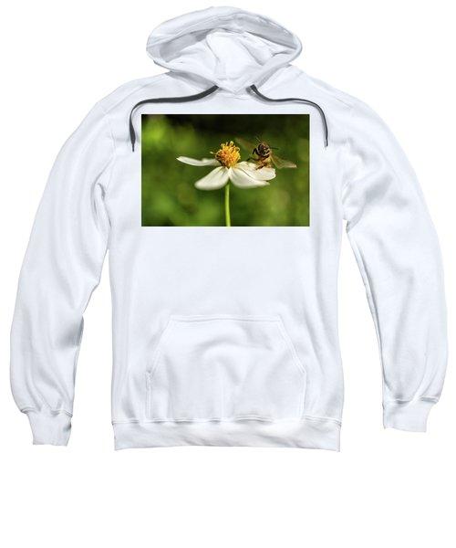 Buzz Off Sweatshirt