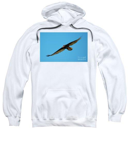 Buzzard Circling Sweatshirt by Mike Dawson