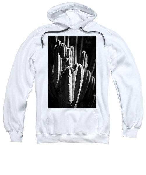 Cactus IIi Sweatshirt