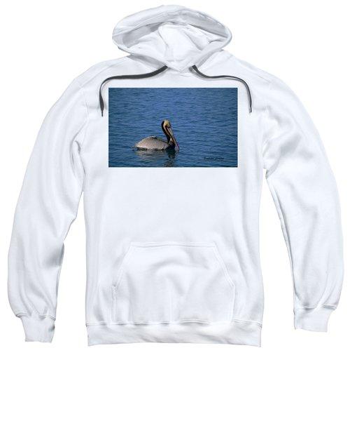 California Brown Pelican Oil Sweatshirt