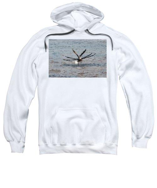 California Brown Pelicans Flying In Tandem Sweatshirt