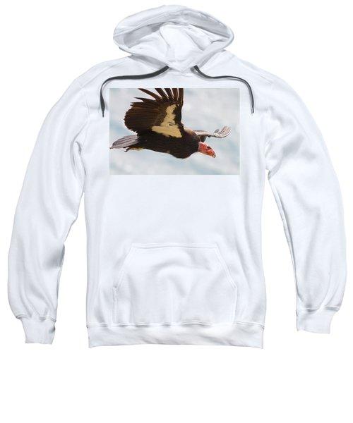 California Condor At Big Sur Sweatshirt