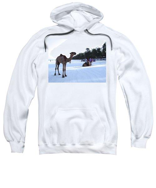 Camel On Beach Kenya Wedding 5 Sweatshirt