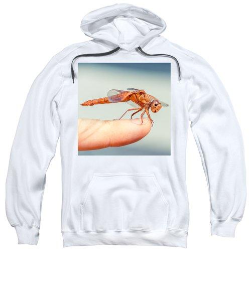 Can't Make Up My Mind Sweatshirt