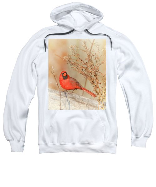 Cardinal In Fall  Sweatshirt