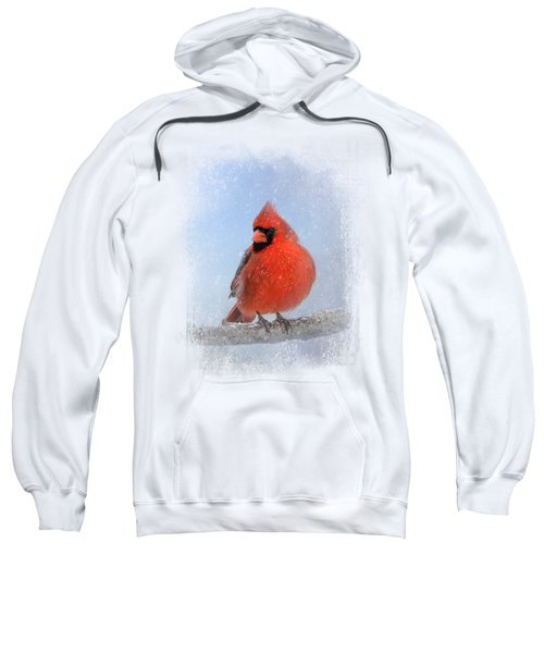 Cardinal In The Snow Sweatshirt by Jai Johnson