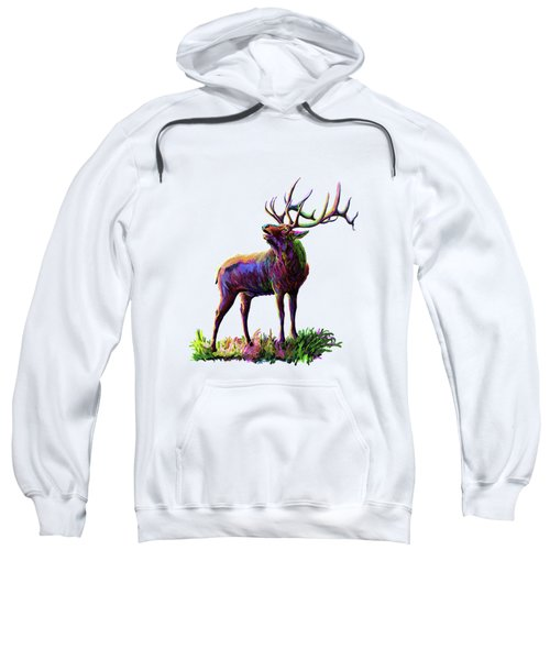 Colorful Caribou Sweatshirt