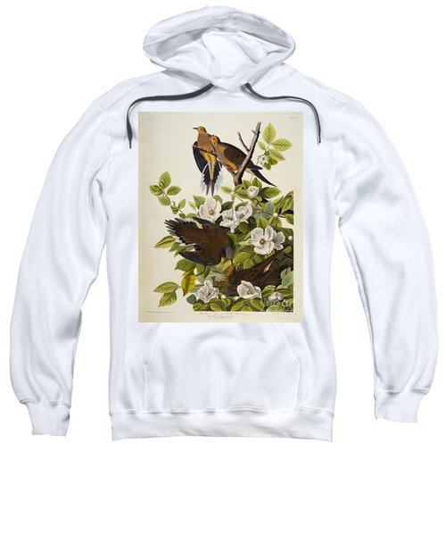 Carolina Turtledove Sweatshirt by John James Audubon