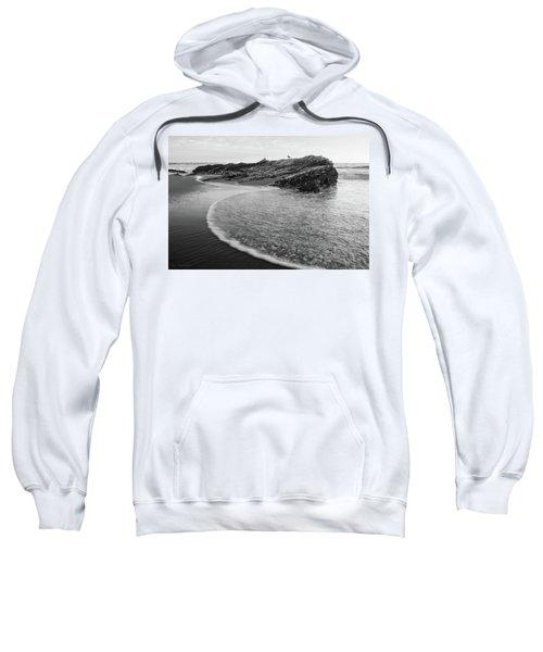 Carpinteria Seagull Sweatshirt