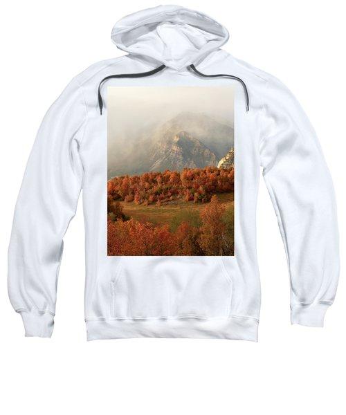 Cascading Fall Sweatshirt