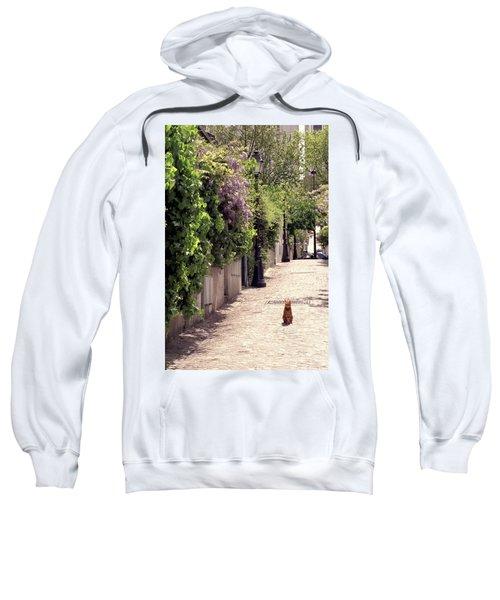 Cat On Cobblestone Sweatshirt