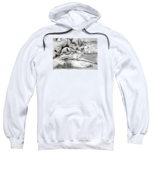 Pat's Field Sweatshirt
