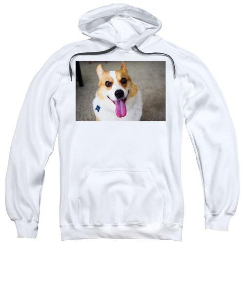Charlie The Corgi Sweatshirt