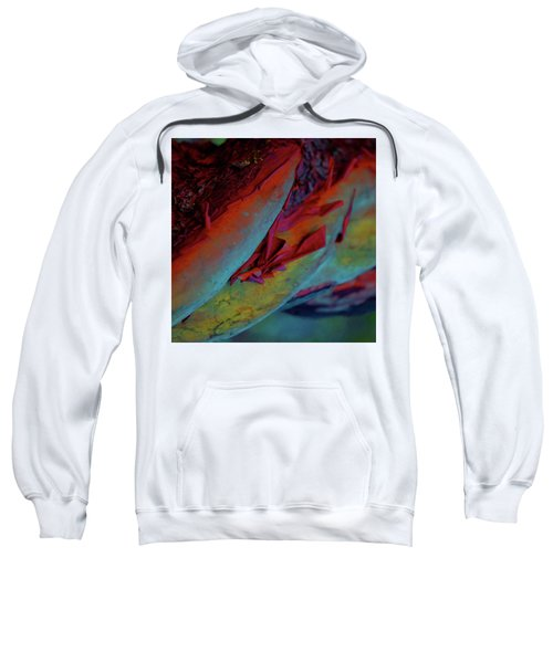 Cherish Sweatshirt