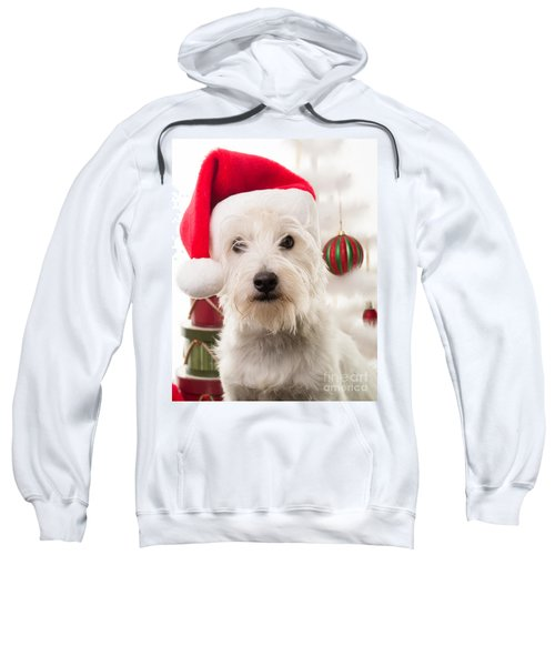 Christmas Elf Dog Sweatshirt