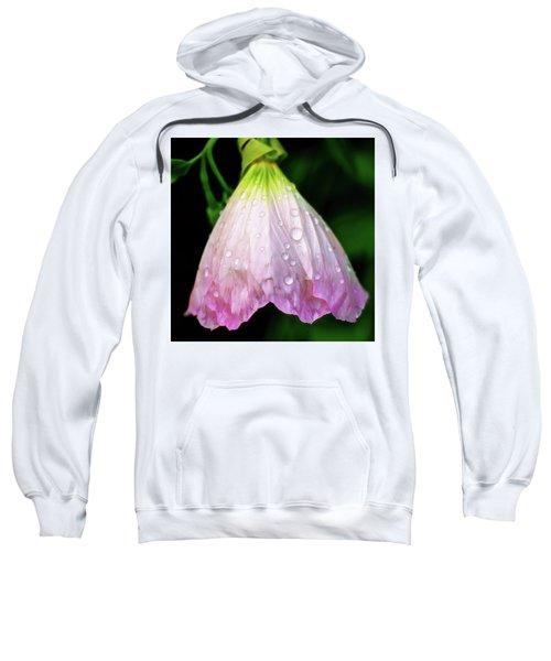 Cinderella's Dress Sweatshirt
