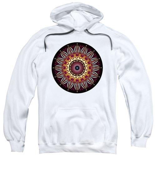 Circularium No 2639 Sweatshirt