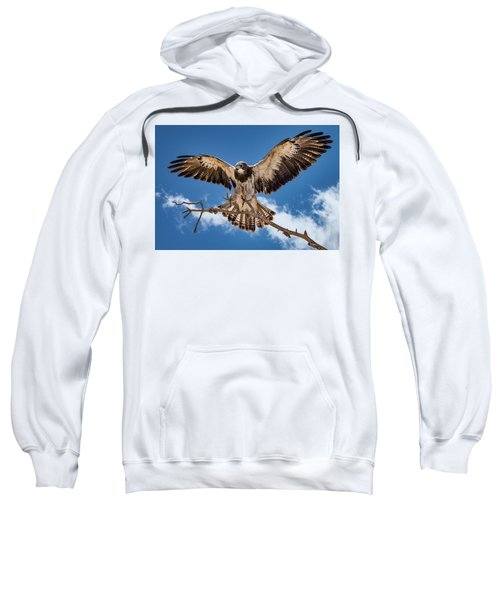 Cleared For Landing Sweatshirt