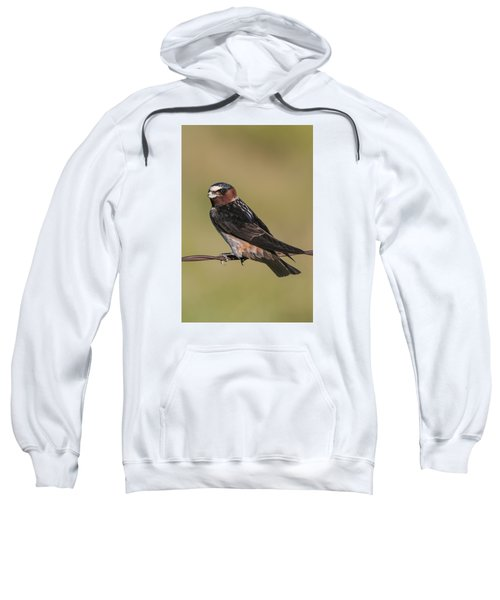Sweatshirt featuring the photograph Cliff Swallow by Gary Lengyel