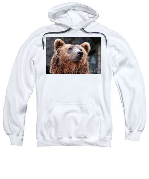 Sweatshirt featuring the photograph Close Up Bear by MGL Meiklejohn Graphics Licensing