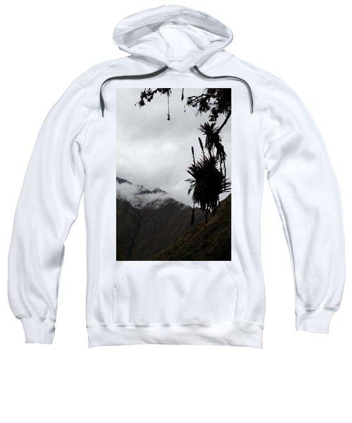 Cloud Forest Musings Sweatshirt