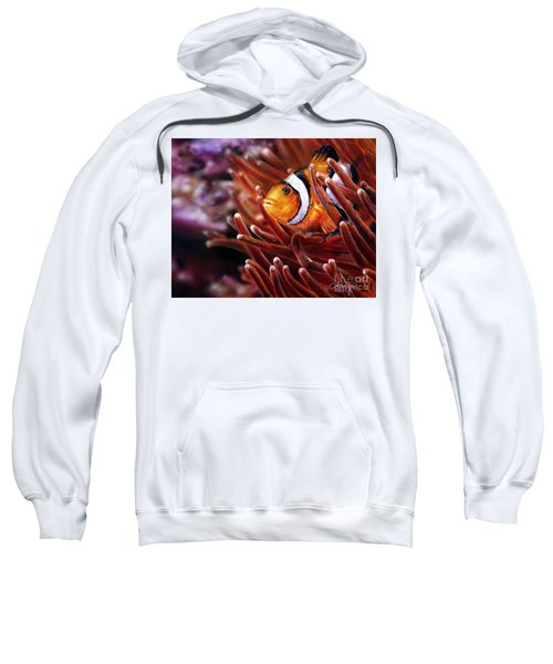 Clownfish Sweatshirt