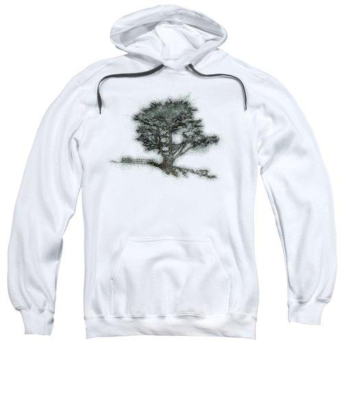 Coastal Tree Sketch Sweatshirt