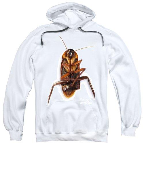 Cockroach Carcass Sweatshirt