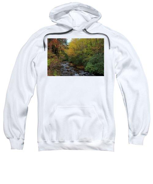 Cold Stream Sweatshirt