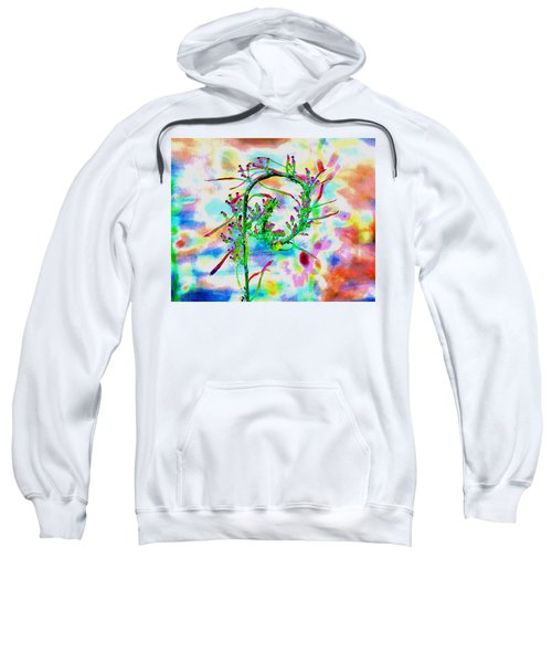 Color Curl Sweatshirt