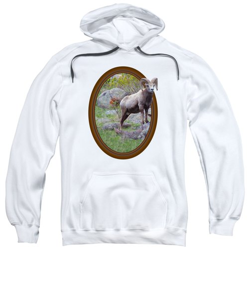 Colorado Bighorn Sweatshirt
