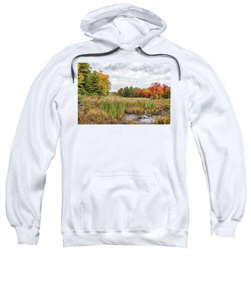 Colorful Webster Bog Sweatshirt