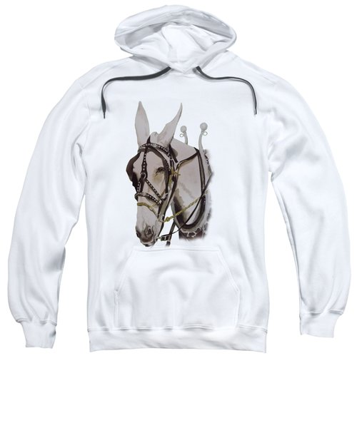 Connie The Mule Sweatshirt by Gary Thomas