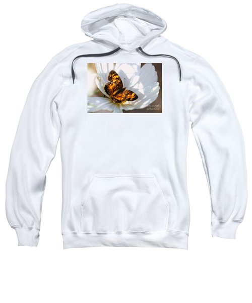 Pearl Crescent Butterfly On White Cosmo Flower Sweatshirt
