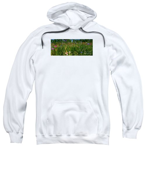 Country Wildflowers IIi Sweatshirt