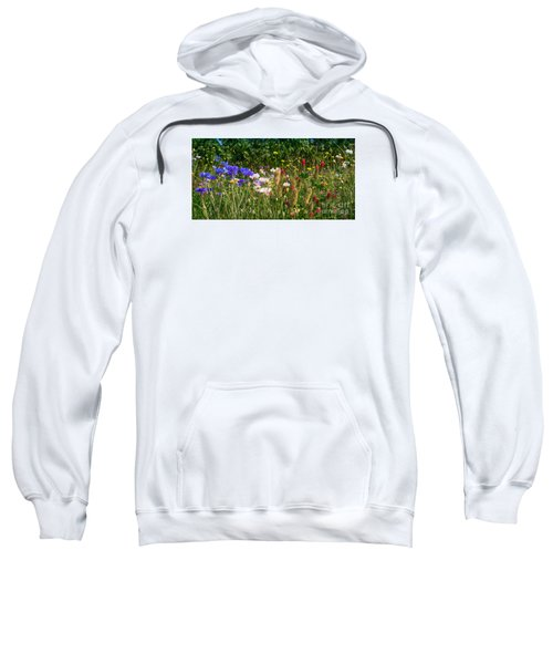 Country Wildflowers Iv Sweatshirt